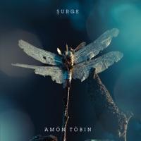 Surge (16Bit Remix) mp3 download