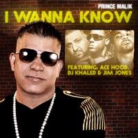 I Wanna Know (Remix) [feat. DJ Khaled, Ace Hood & Jim Jones] - Single album download