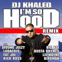 I'm So Hood (feat. Young Jeezy, Ludacris, Busta Rhymes, Big Boi, Lil Wayne, Fat Joe, Birdman & Rick Ross) [Remix] mp3 download