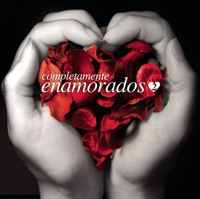 Un-Break My Heart (Spanish Version) mp3 download