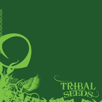 Download Island Girl Tribal Seeds MP3
