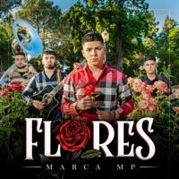 Flores - EP download