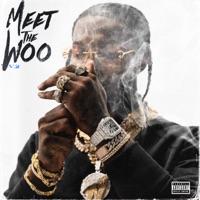 Meet the Woo 2 download