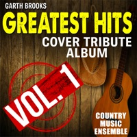 To Make You Feel My Love by Country Music Ensemble MP3 Download