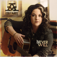Download Never Will by Ashley McBryde album