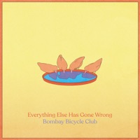 Download Everything Else Has Gone Wrong - Bombay Bicycle Club