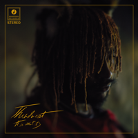 Download It Is What It Is by Thundercat album