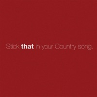 Stick That in Your Country Song by Eric Church MP3 Download