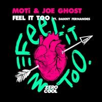 Feel It Too (feat. Danny Fernandes) mp3 download