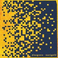 Download Marigold - Pinegrove