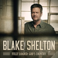 Nobody But You (feat. Gwen Stefani) by Blake Shelton MP3 Download