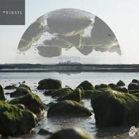 Pretty Paradox (Primate Remix) [feat. Aurora] mp3 download