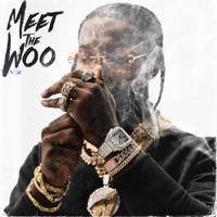Meet The Woo, Vol. 2 download