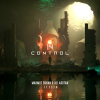 In Control (feat. Selin) mp3 download