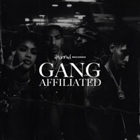 4hunnid Presents: Gang Affiliated album download