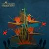 Lost in Paradise album cover