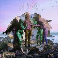 Barnacles download