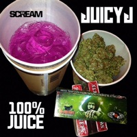 100% Juice album download