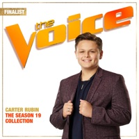 Rainbow Connection (The Voice Performance) by Carter Rubin MP3 Download
