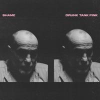 Download Drunk Tank Pink by shame