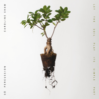 Download Let the Soil Play Its Simple Part by Caroline Shaw & Sō Percussion album