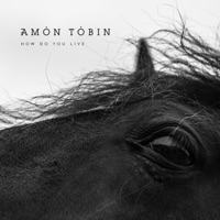 Download How Do You Live - Amon Tobin