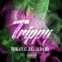 Trippy (feat. Juicy J & Tay Don) - Single album download