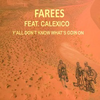 Y'all Don't Know What's Goin On (feat. Calexico) - Single album download