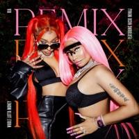 WHOLE LOTTA MONEY (Remix) by BIA & Nicki Minaj MP3 Download
