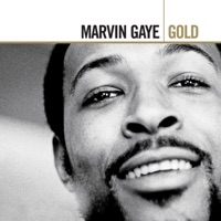 Ain't No Mountain High Enough by Marvin Gaye & Tammi Terrell MP3 Download
