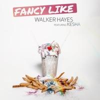 Fancy Like (feat. Kesha) by Walker Hayes & Kesha MP3 Download