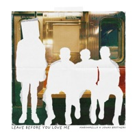 Leave Before You Love Me by Marshmello & Jonas Brothers MP3 Download