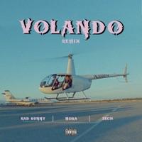 Volando (Remix) download mp3
