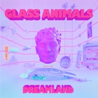 Heat Waves by Glass Animals MP3 Download