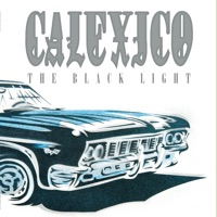 The Black Light (20th Anniversary Edition) album download