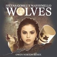 Wolves (Owen Norton Remix) mp3 download