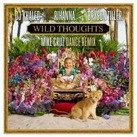 Wild Thoughts (feat. Rihanna & Bryson Tiller) [Mike Cruz Dance Remix] - Single album download