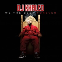 We the Best Forever album download