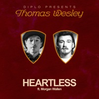 Heartless (feat. Morgan Wallen) by Diplo MP3 Download