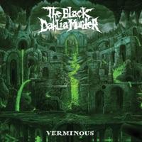 Verminous by The Black Dahlia Murder album download