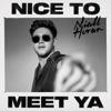 Nice to Meet Ya mp3 download