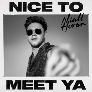 Download Nice to Meet Ya Niall Horan MP3