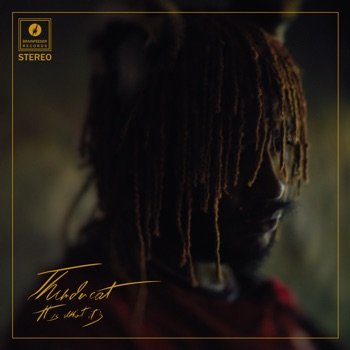 It Is What It Is by Thundercat album download