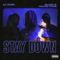 Stay Down download mp3