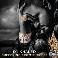 Never Surrender (feat. Scarface, Jadakiss, Meek Mill, Akon, John Legend & Anthony Hamilton) mp3 download