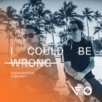 I Could Be Wrong mp3 download