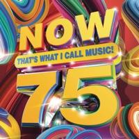 Heartless (feat. Morgan Wallen) mp3 download