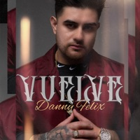Vuelve - Danny Felix album download