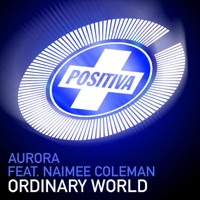 Ordinary World (Extended Mix) mp3 download
