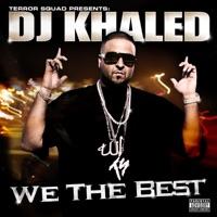 We Takin' Over (feat. Akon, Birdman, Fat Joe, Lil Wayne & Rick Ross) mp3 download